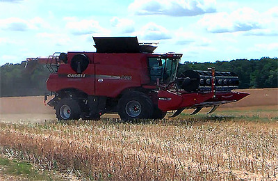 "Комбайн ""Case IH Axial-Flow 9120"" на уборке рапса"